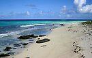 Loblolly Bay Beach Rocks in Anegada by DARRIN ALDRIDGE