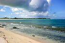 Anegada's Loblolly Bay by DARRIN ALDRIDGE