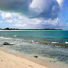 Anegada Bay by DARRIN ALDRIDGE