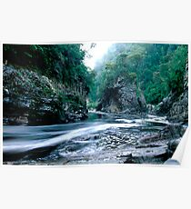 Rock Island Bend, Franklin River, Tasmania Poster
