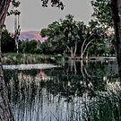 Sundown At The Pond by marilyn diaz