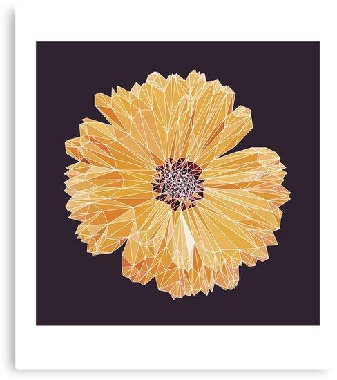 polygonal chrysanthemum by vladajust