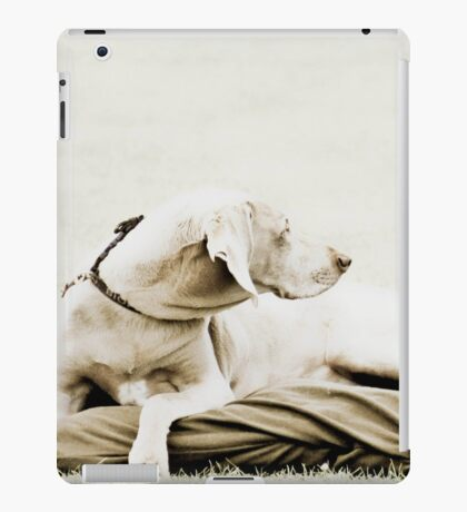 Who's that over there? iPad Case/Skin