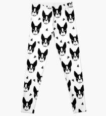 Boston Terrier - White Leggings