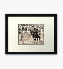 A Rodeo Cowboy Rides his Bull Framed Print