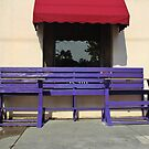 Whimsical Purple Bench  by Cynthia48