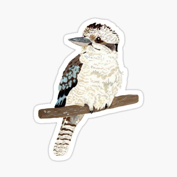 kookaburra  Sticker