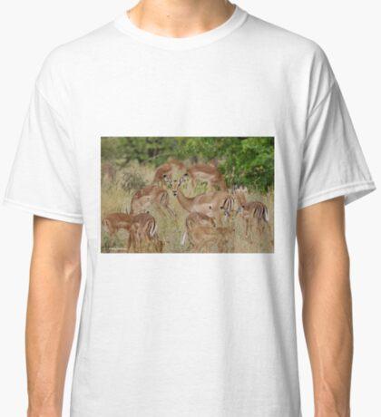 Come children, time to go! IMPALA – Aepyceros melampus melampus – ROOIBOK Classic T-Shirt