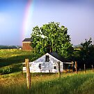 """""""Beauty After The Storm"""" by Melinda Stewart Page"""