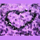Rock Love  (Purple) by Joe Lach