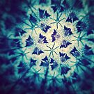 Blue Butterflies by Kiwi-Fur