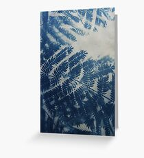 Fern Cyanotype Greeting Card