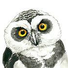 Owl by Katerina Kirilova
