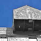 Shed in the Blue Sky by Jen Waltmon