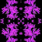 A purple pattern created in chaoscope and gimp fractal trace by Dennis Melling