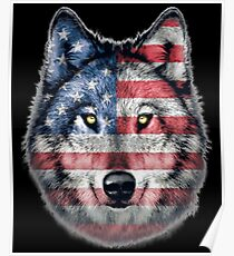 American Wolf Face Poster