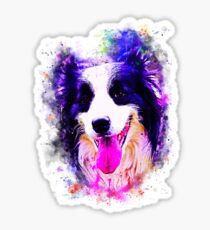 gxp border collie shepherd dog splatter watercolor Sticker