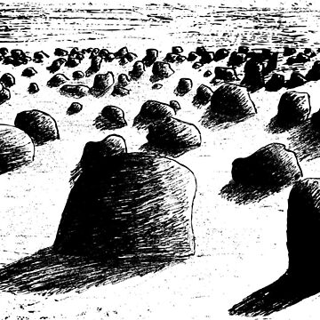 desert with many stones by Shoshina