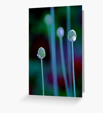 Alien Pods Greeting Card