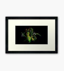 Rayquaza Framed Print