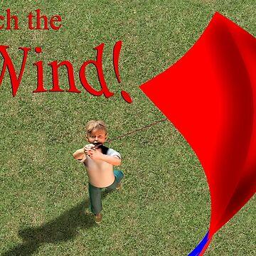 Kite Flying  by fotokatt
