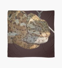 Chameleon Hanging On A Wire Fence Vector Scarf