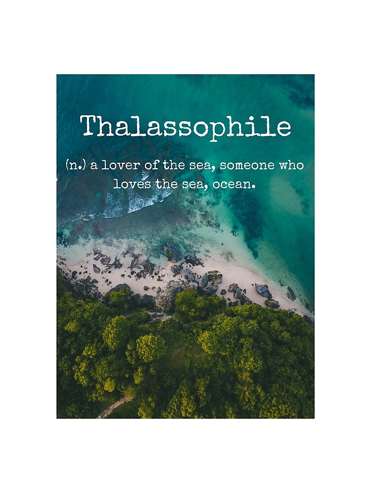 Beach Themed Thalassophile Products For the Beach Lover Inside You by BeachLove99