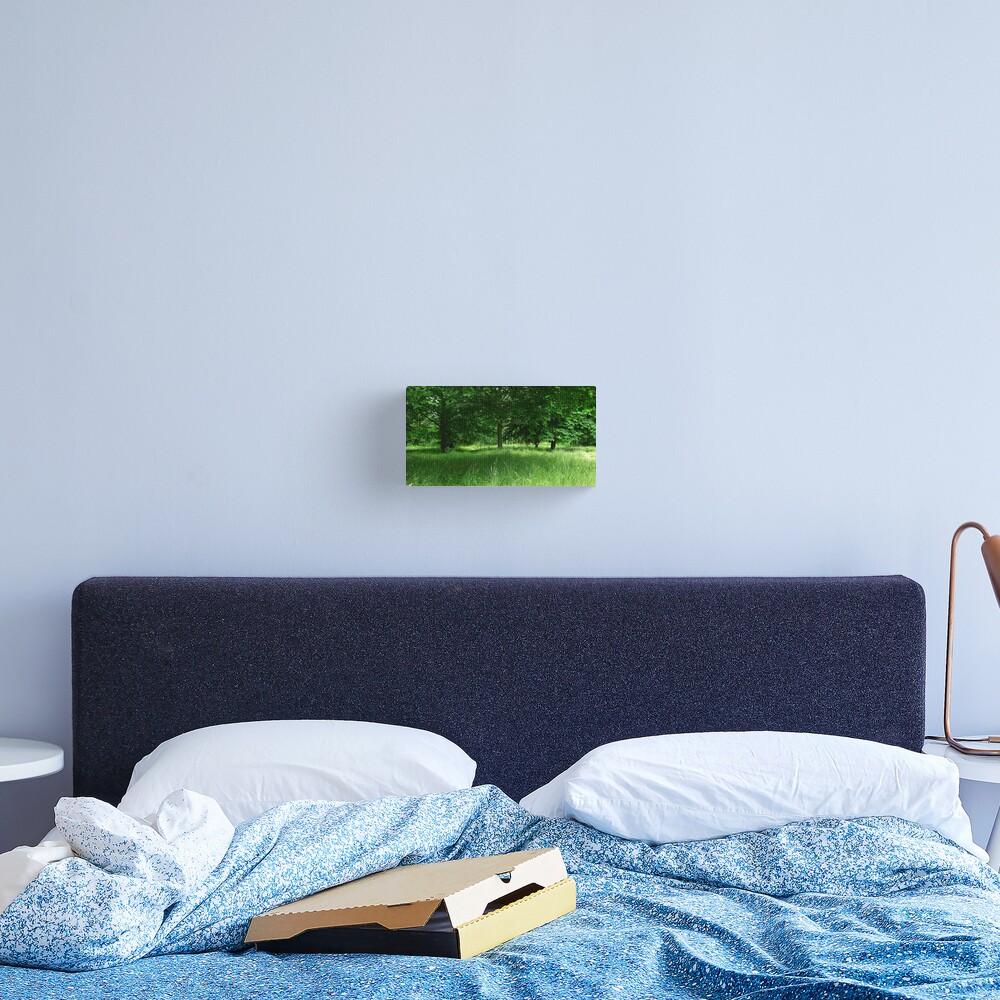 Dream of Green Canvas Print