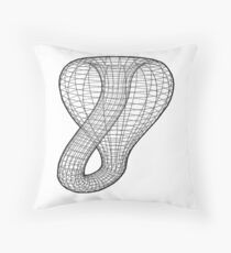 A two-dimensional representation of the Klein bottle immersed in three-dimensional space, #TwoDimensional, #representation, #KleinBottle, #immersed, #ThreeDimensional, #space Throw Pillow