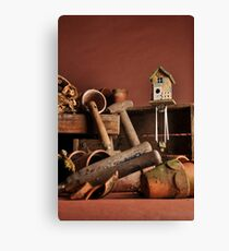 Garden Shed Canvas Print