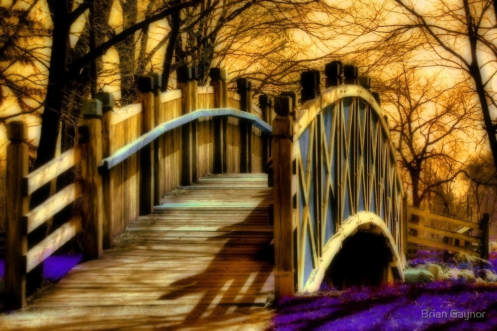 Crossing Over by Brian Gaynor