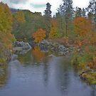 The Applegate River by Bryan D. Spellman