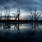 Blue mood. by Steve Chapple