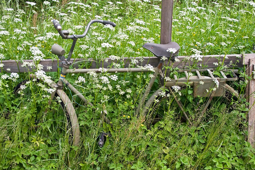 Old Bicycle by Ilva Beretta