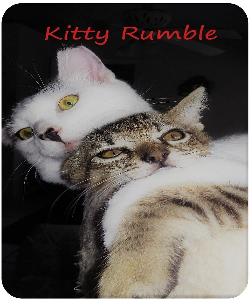 KITTY RUMBLE - Tabby and Bobtail by Catmoongems
