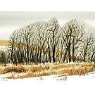Spring on the Prairies 2 by victorsart
