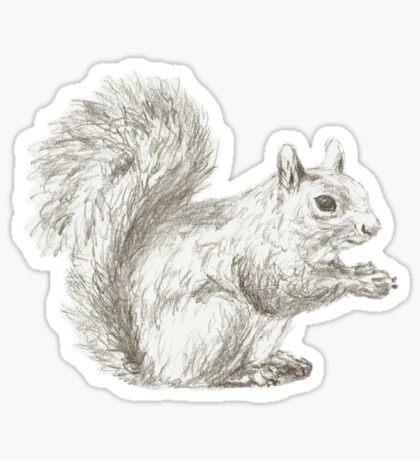 Squirrel at Rest Sticker