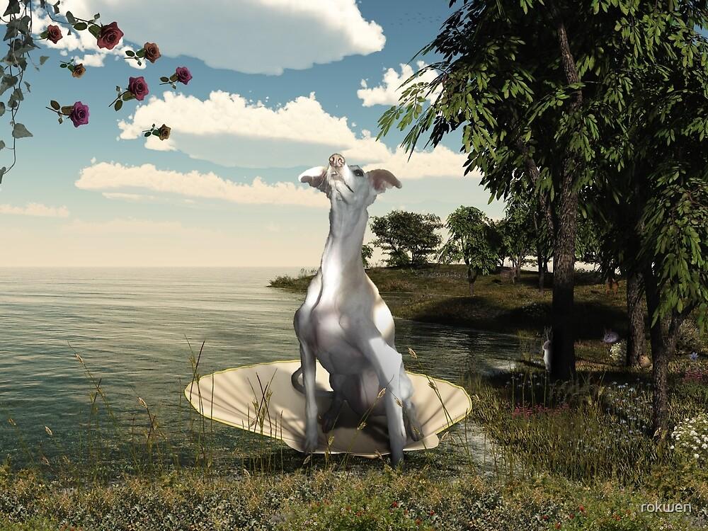 The birth of a greyhound by rokwen