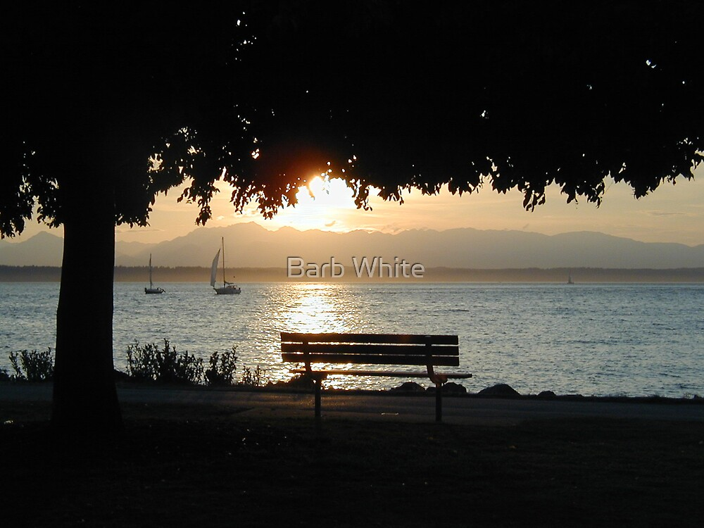 Seat with a view by Barb White