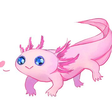 Axolotl by Tmis