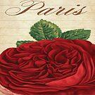 PARIS ROSE Pop Art by Bruce ALMIGHTY Baker