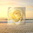 Translucent Ocean Rose Gold  by Candy Paull