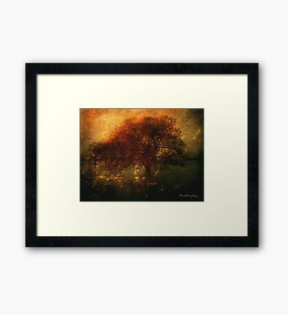 Toward a secret sky ... Framed Print