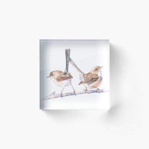 Fairy Wrens Acrylic Block