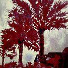palm trees modern art acrylic painting by derekmccrea