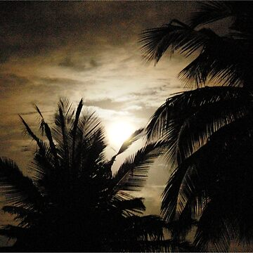 MOON SILHOUETTES - MOZAMBIQUE by mags