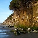 """Encinitas Beach Looking North"" by Tim&Paria Sauls"