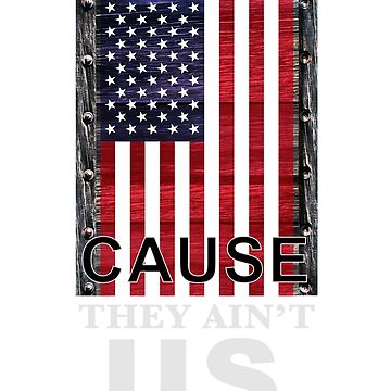 They Hate Us Cause They Ain't U.S. by Obscadia