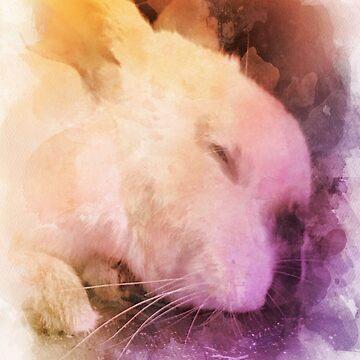 Sleepy bun by thedailybunnies