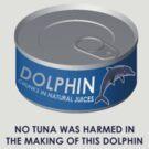 Tuna safe Dolphin by Stuart Stolzenberg